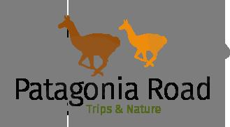 Patagonia Road | South America Custom Trips